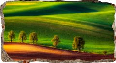 Fototapet 3D Startonight Peisaj verde, luminos in intuneric, 1.50 x 0.82 m