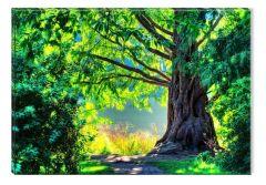 Tablou DualView Startonight Padure Verde de Basm, luminos in intuneric, 40 x 60 cm