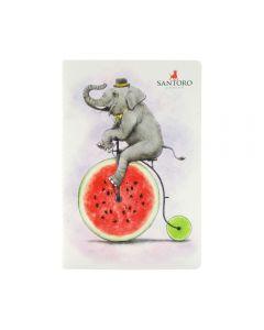 Caiet activitati Fruity Scooty Elephant