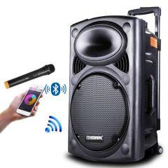Boxa Portabila Activa 350W 12 Inch Temeisheng , Troller, Wireless, Bluetooth, Acumulator