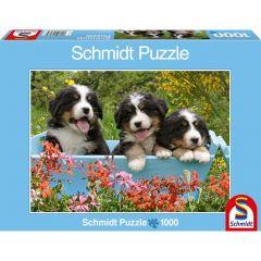 Puzzle Schmidt 1000 piese: Trei cățeluși