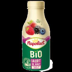 Iaurt de baut bio fructe de padure 230ml Napolact