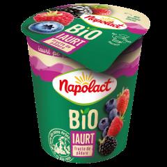 Iaurt Bio cu fructe de padure Napolact 130g