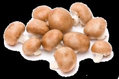 Ciuperci champignon brune 500g