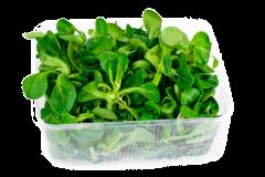 Spanac verde Bio Romania 500g