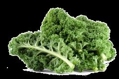 Kale bio  100g