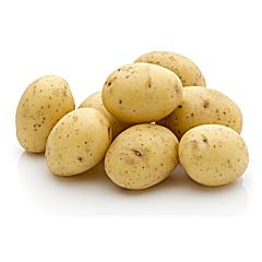 Cartofi noi albi Romania 1.5kg