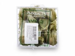 Physallis Import 100g
