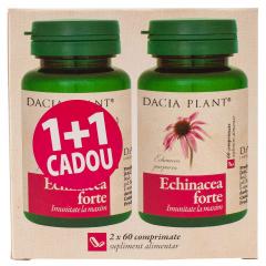 Echinacea forte Dacia Plant 1+1