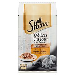 Hrana pentru pisici adulte Selectii de pasare in sos Sheba 6x50g