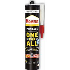 Moment silicon One For All