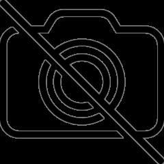 Caiet mecanic PP A4 2 inele design Orase