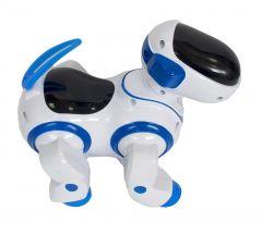 Caine Robot Dansator