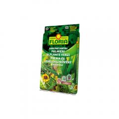 Substrat plante palmieri 10 L
