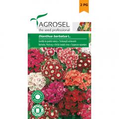 Seminte Garofita de gradina, Agrosel