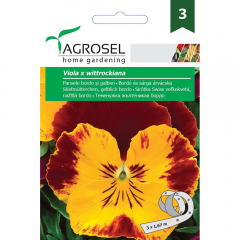 Seminte Pansele bordeaux-galben PG3