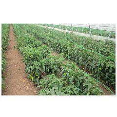 Plasa Pentru Plante H 1.7