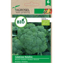 Seminte Broccoli Calabrese Natalino ECO *