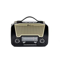 Radio Fepe FP-1502U, AM, FM, SW1/2, MP3 player cu lanterna