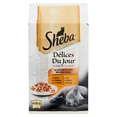 Hrana umeda completa pentru pisici Delices Du Jour Sheba, selectii de pasare in sos, 6 x 50 g