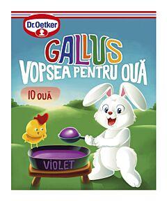 Vopsea granulata violet Gallus pentru 10 oua