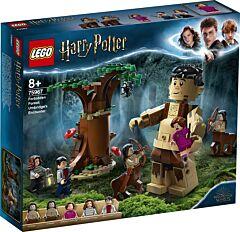 LEGO Harry Potter Padurea interzisa: intalnirea dintre Grawp si Umbridge 75967