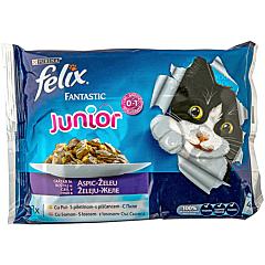 Hrana uscata pentru pisici cu pui si somon Felix Fantastic junior 4x100g