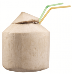 Nuca de cocos Pyramid per bucata