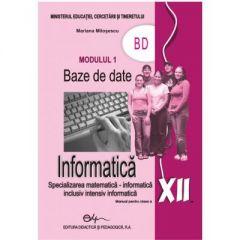 Informatica. Manual pentru clasa a XII-a modulul 1 BD (M1)