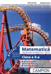 Matematica probleme si exercitii, teste, clasa a X-a semestrul II. Profil tehnic