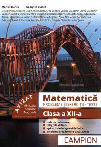 Matematica probleme si exercitii, teste, clasa a XII-a semestrul II. Profil tehnic