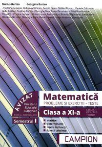 Matematica probleme si exercitii, teste, clasa a XI-a semestrul I. Profil tehnic