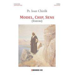 Model, chip, sens - Ioan Chirila