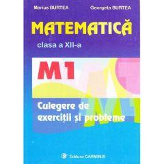 Matematica clasa 12 M1 culegere de exercitii si probleme - Marius Burtea, Georgeta Burtea