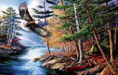 Puzzle SunsOut - James A. Meger: Freedom Waters, 1.000 piese (63948)