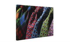 Cravate colorate Tablou Canvas 4Decor