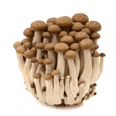Ciuperci Shimeji brune 150g