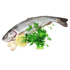 Pastrav eviscerat Ocean Fish (400-600 grper/caserola)