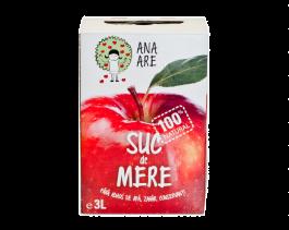 Suc de mere in sarcina