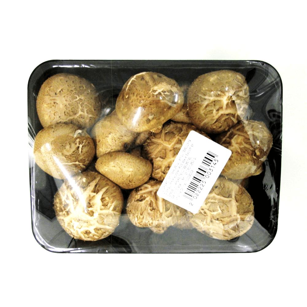 ciuperci shiitake pret)