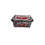 Cutie depozitare model London, cu capac, PP, 28x18x14 cm, 5 L, Multicolor