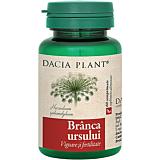Branca ursului Dacia Plant 60 comprimate