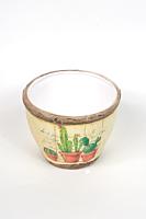 Ghiveci ceramica cactus 9.5 cm