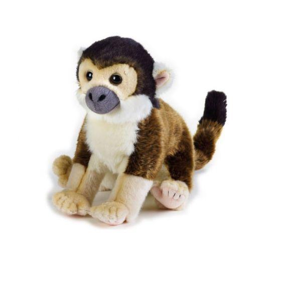 """VIDEO. Turiști tâlhăriți de maimuțe: """"O, nu, ți-a luat încărcătorul!"""""""